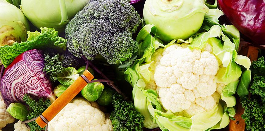 PLANT-BASED PROTEINS e qualidade nutricional: é possível ter boa qualidade proteica usando proteínas derivadas de vegetais?